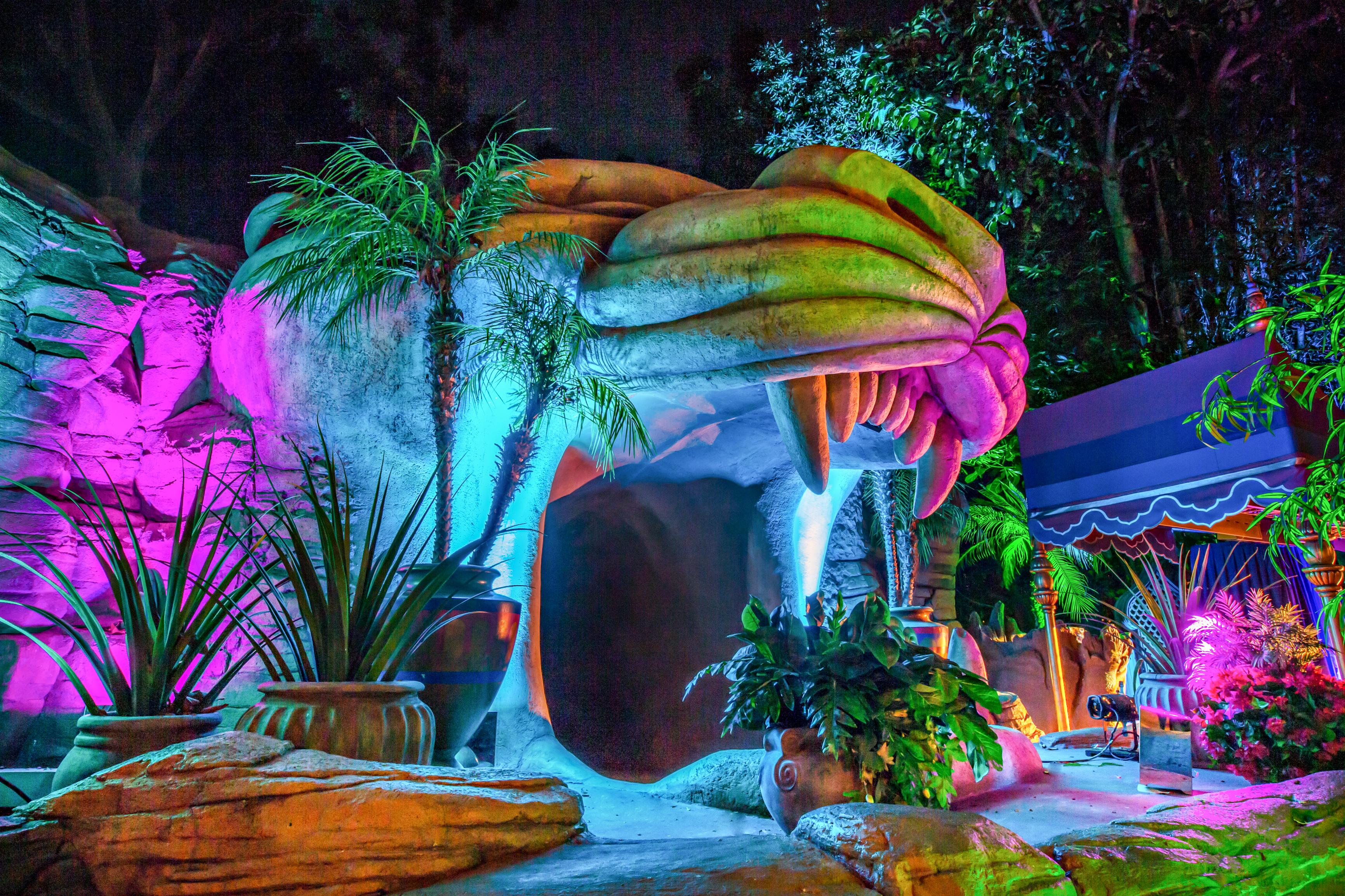 disneyland-aladdins-oasis-wedding-0047
